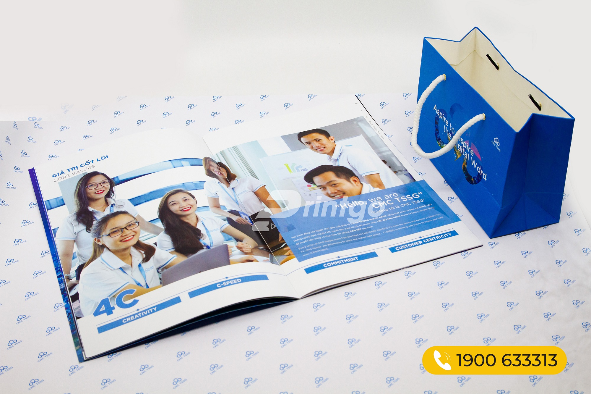 Mẫu Catalogue giới thiệu công ty