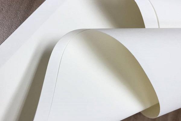 Giấy Ivory là gì? Ứng dụng của giấy Ivory trong ngành in ấn
