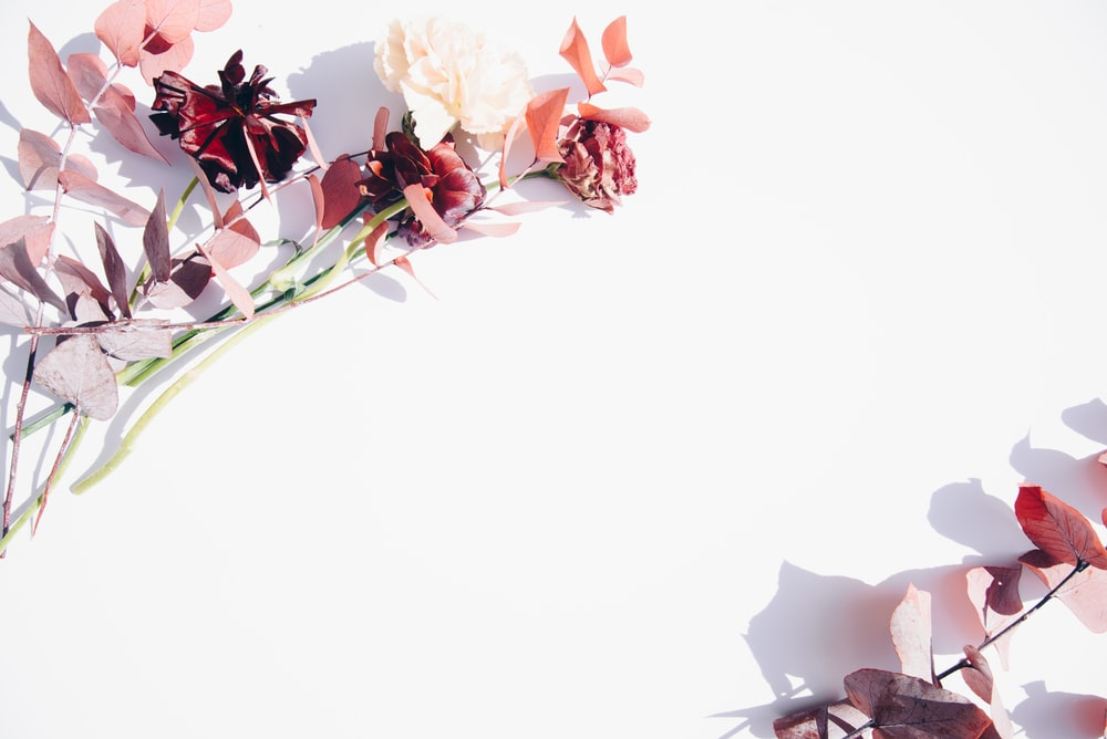 Top 10+ các mẫu background 20/10 đẹp và ấn tượng nhất