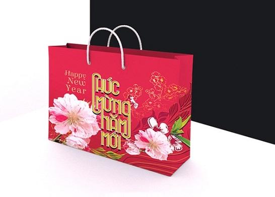 Mẫu túi giấy đựng quà tết TQT-02