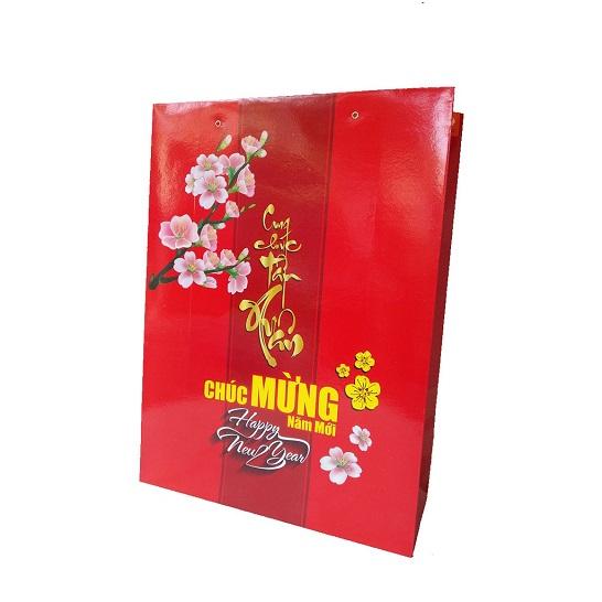 """Mẫu túi giấy đựng quà tết """"Cung Chúc Tân Xuân"""" TQT-11"""